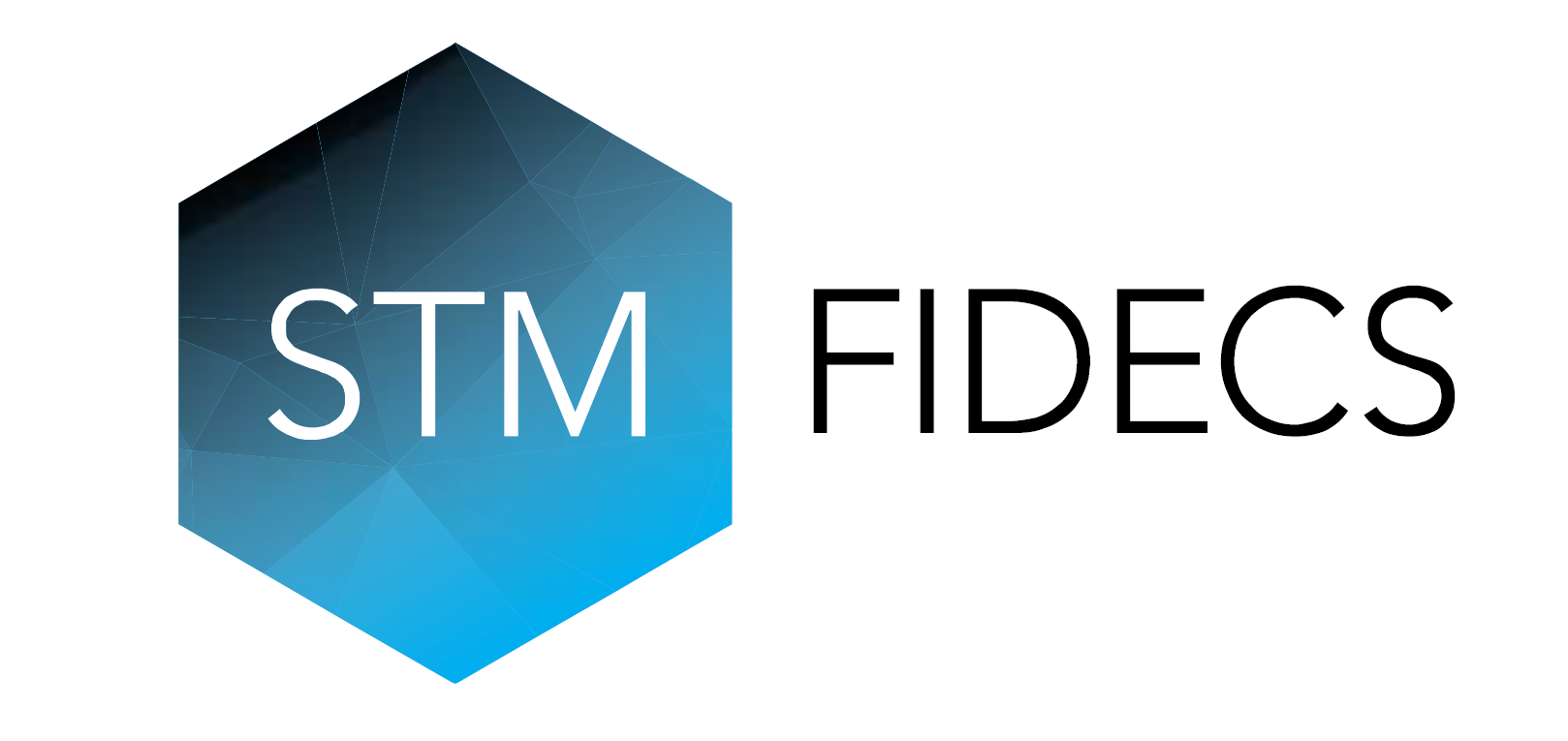 STM Fidecs Compliance Officer Position